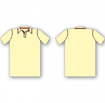 Plain Cricket Shirt